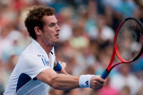Murray Y Djokovic se batirán en la final del torneo de Maestros